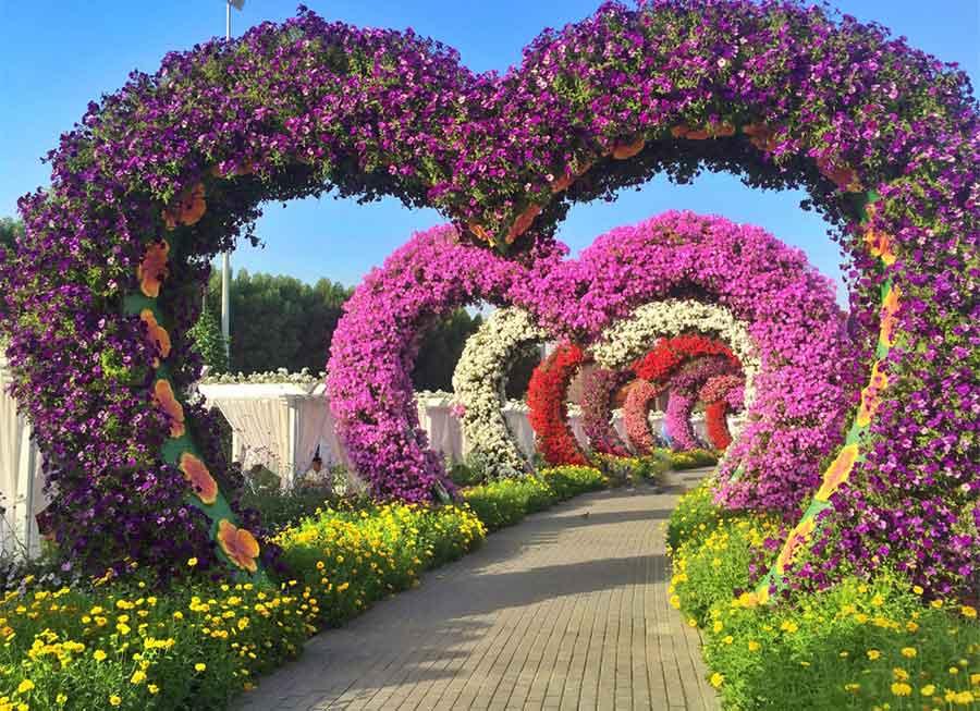 rezeem-blog-valentines-day-miracle-garden